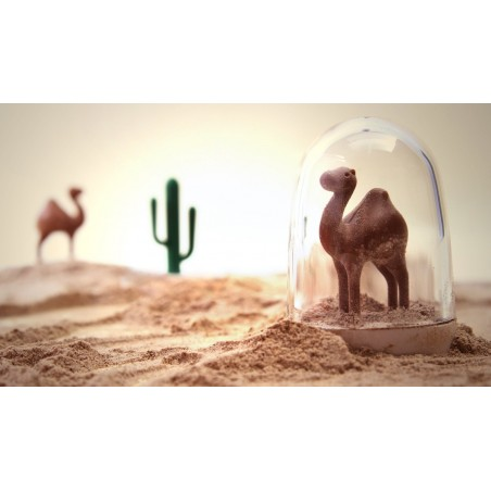 set 4 Portaspezie con piattino - ANIMAL PARADE by QUALY DESIGN
