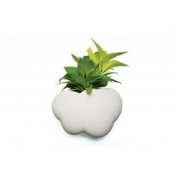 Vaso o portaoggetti da parete - Pot Cloud  by Qualy
